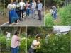 사진:삼성전자(GTC사랑나누기) 9월 정기봉사 활동
